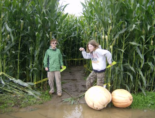 The boys at the entrance to the corn maze.