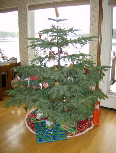 the tree with ornaments collected over the decades