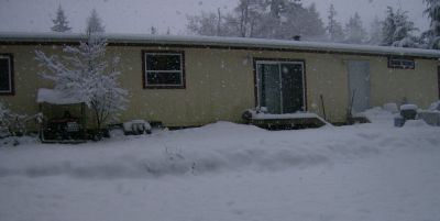 the back of the house, with snow still falling